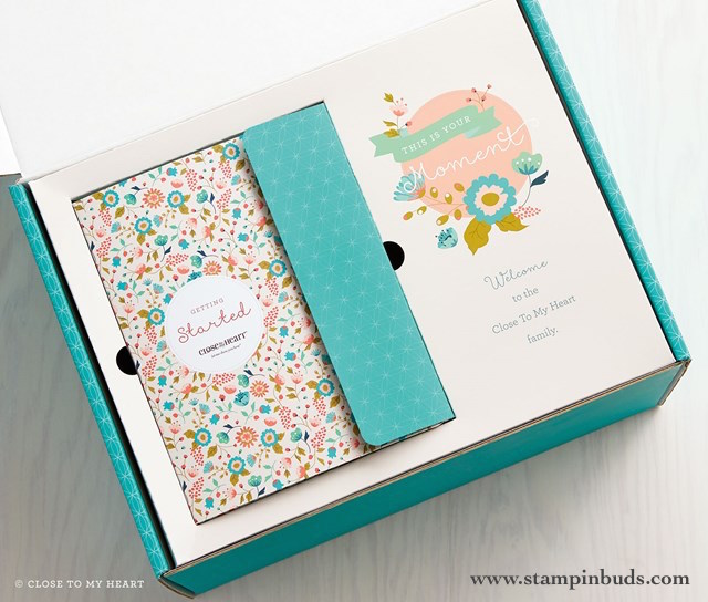 Happy August with Zoe Paper, Cricut Artistry & New Consultants