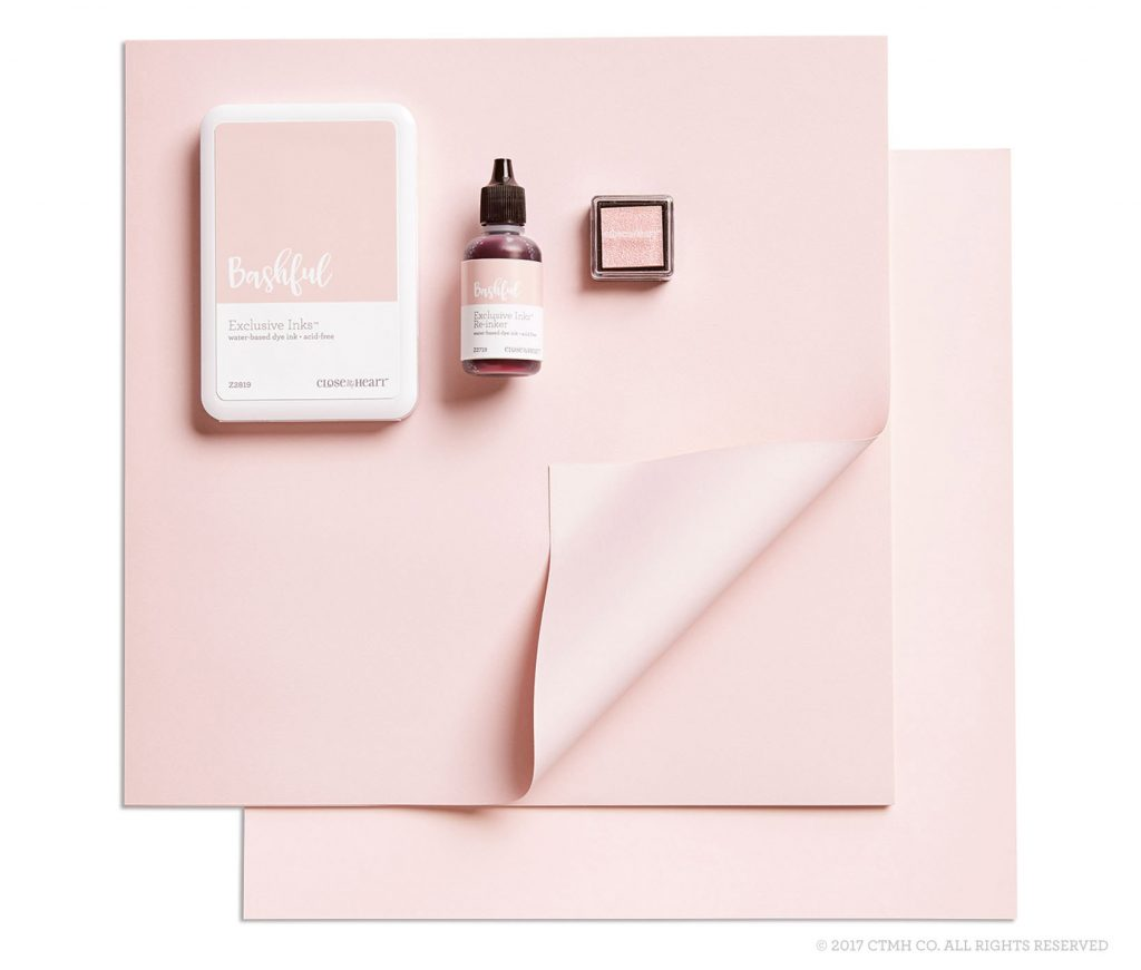 17/18 Color of the Year - Bashful