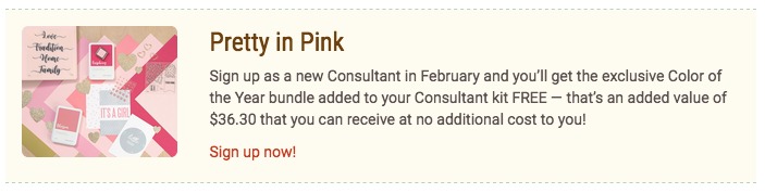 CTMH Pink Bundle with Consultant Kit
