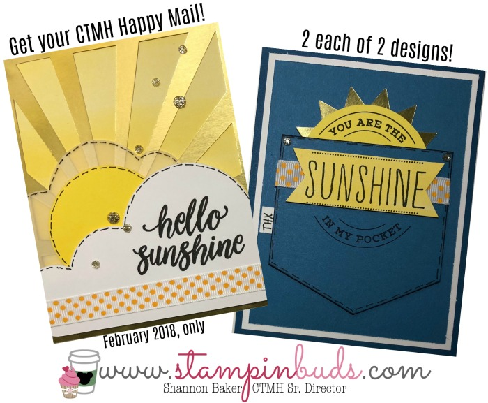 Feb. 2018 Happy Mail Sunny Thoughts